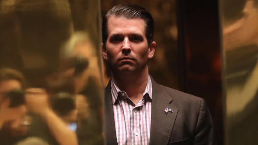 Secret Service didn't vet Trump Jr meeting