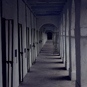 Inside Cellular Jail: the horrors and torture inflicted by the British