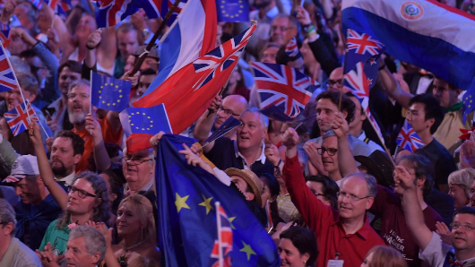 Royal Albert Hall asks Proms concertgoers to put away EU flags