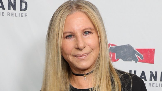 10 times the Streisand effect backfired on celebs