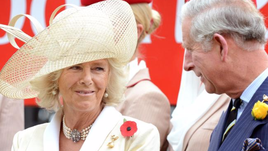 Camilla slept with Charles for 'revenge'
