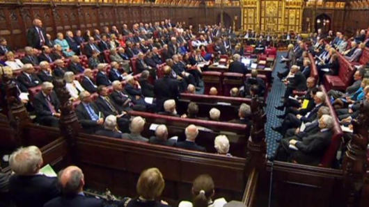 New House of Lords peerages 'to be limited to 15 years'