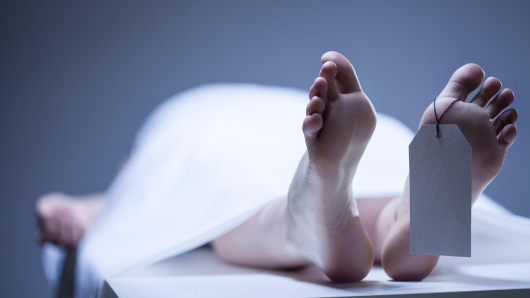 Life after death? The mind still works after you're dead, say scientists