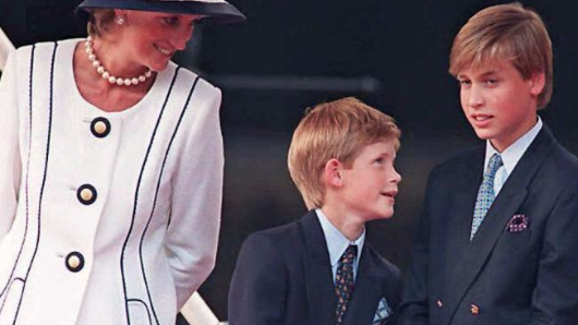 Peek inside the home of a Diana 'fanatic'