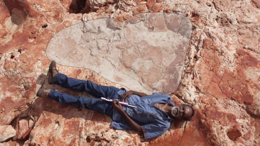 Dinosaur footprint found in SKorea