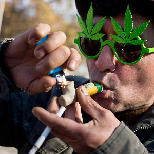California set for legalised marijuana