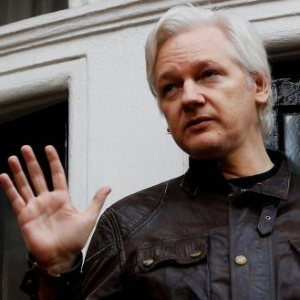 Assange diplomatic status request rejected